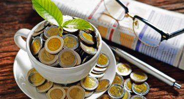 Avvenia Green Economy