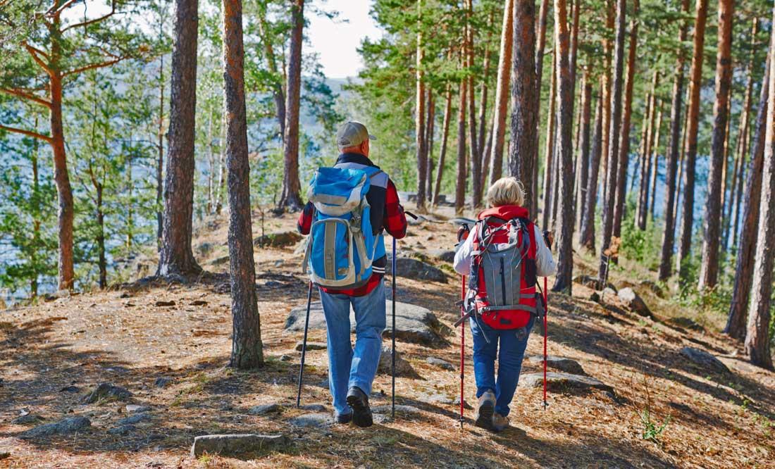 Turismo ecosostenibile Trekking Montagna Verde Green